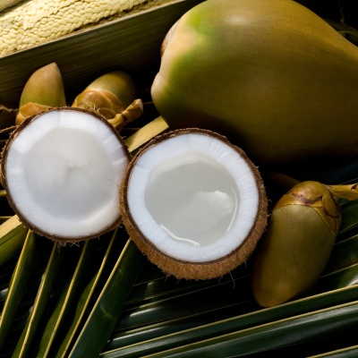 Whole and opened coconuts on palm leaf